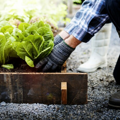 What to consider when landscaping your new home