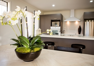 Generation Homes Auckland North House and Land Packages - Orewa - Wake up to direct bush views!