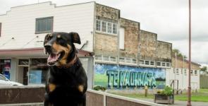 Bucking the trend small town Te-Kauwhata goes boom