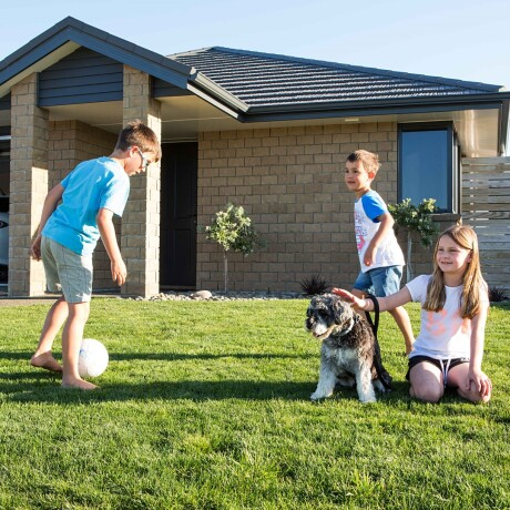 Tips for designing the perfect pet-friendly home